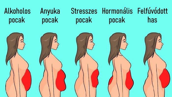 hogyan lehet lefogyni a testsúlyom mikor veszít testzsír