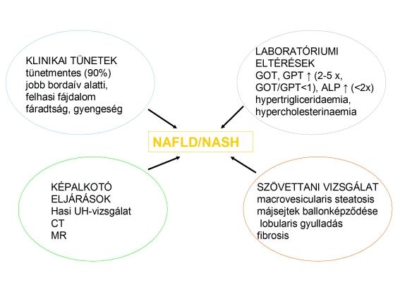 súlycsökkenés májsejt- karcinómában