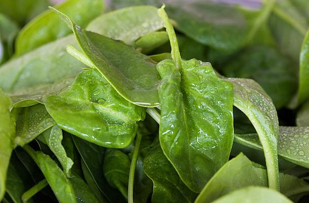 Zsírégető, anyagcsere fokozó receptek spenóttal