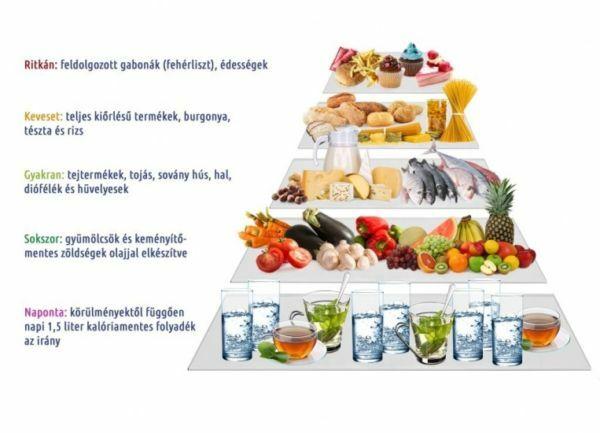 Acai bogyó méregtelenítés végső zsírégető étrend kiegészítő. Egyiptomi diéta pirula