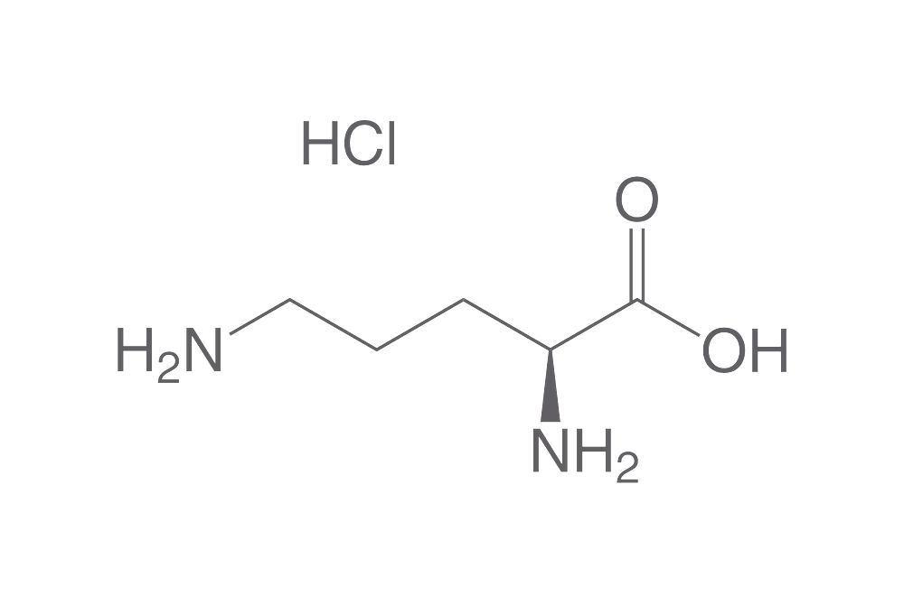 Vér-agy gát változások L-ornitinnel kiváltott akut hasnyálmirigy-gyulladásban