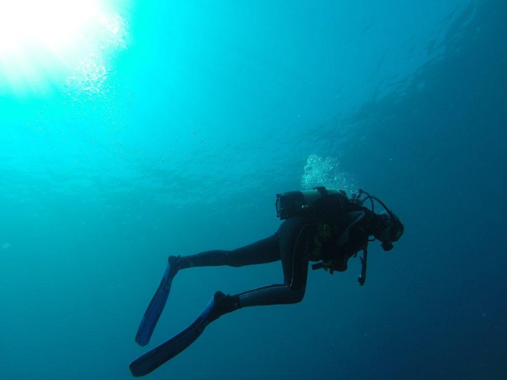 10 ötlet frissen végzett búvároknak   Red Sea Boats Holidays Kft.