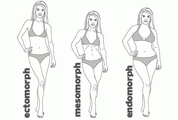 testtípus vs zsírégetés