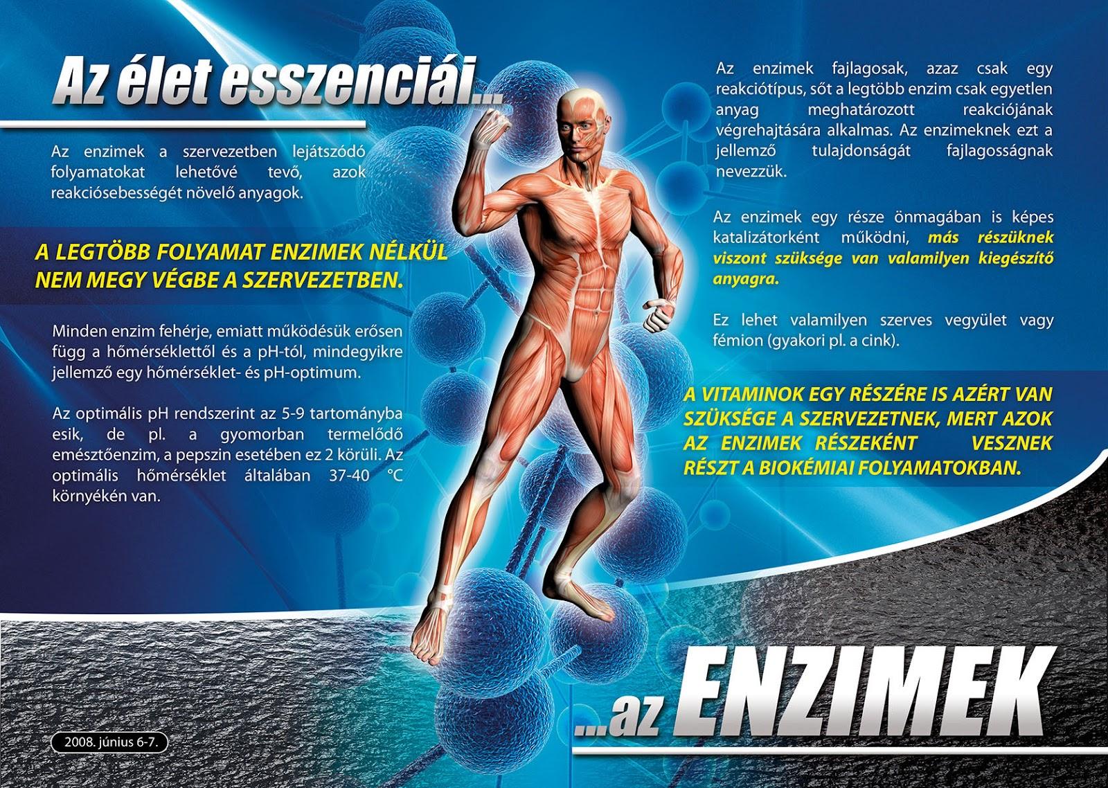 Egy újabb divatdiéta - az enzimdiéta - Napidoktor