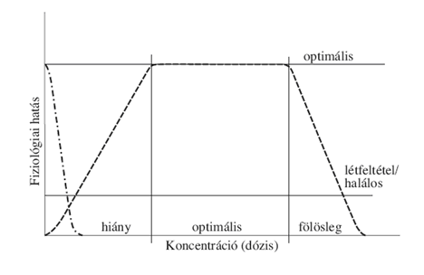 Fogyás A-Zig és a sikert akadályozó 7 fő hiba
