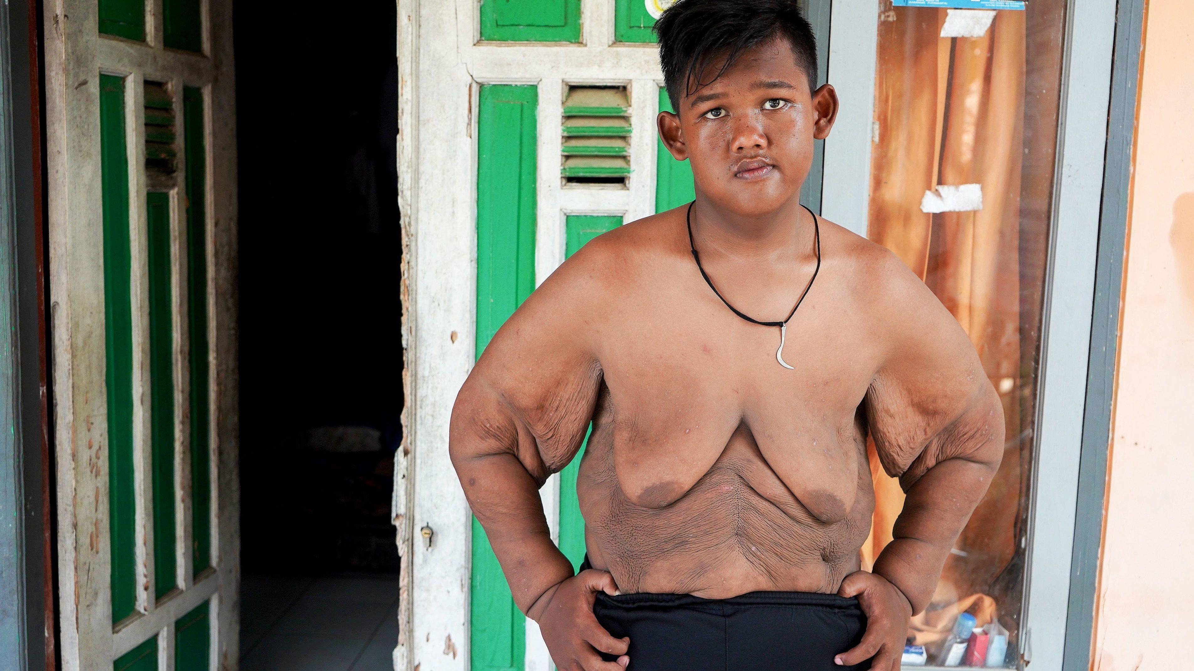 Kövér férfiak - Premium Diet