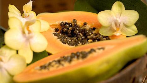 a papaya enzim segít a fogyásban?
