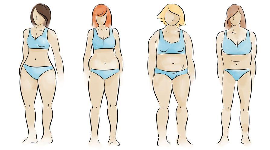 Vitamin Sziget - Enciklopédia / Hormonális típusok avagy testalkat szerinti tipizálás