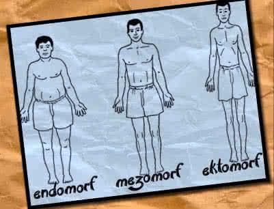 Hormonális testtípusok