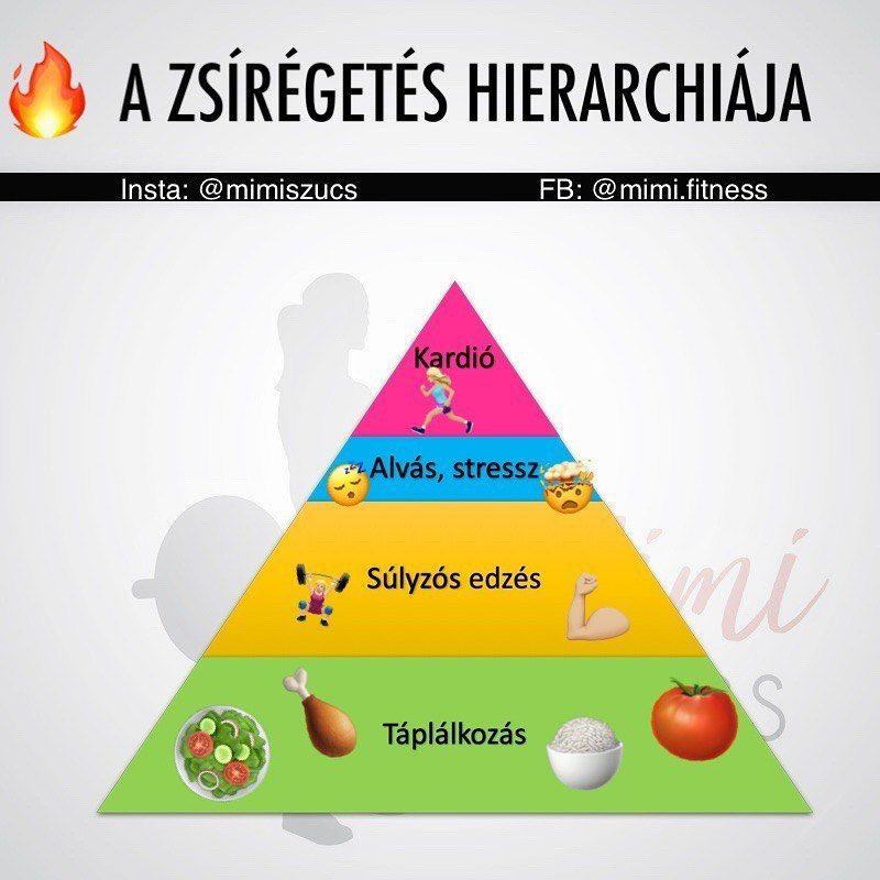 a zsírégetés hierarchiája)