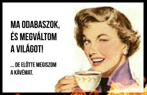 termozsírégető max trec)