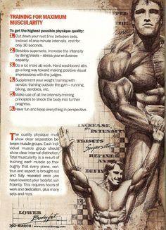 férfiak egészségének zsírégetése)