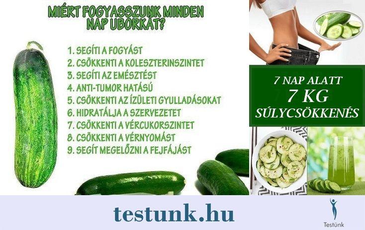 egészséges fogyás hetente kg- ban)