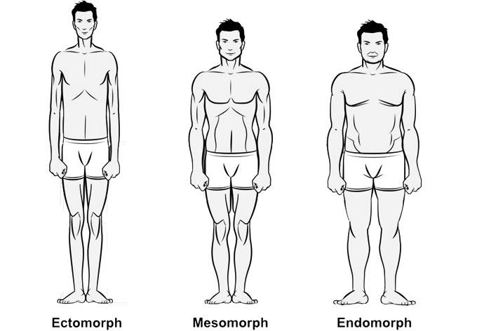 Fogyj okosan, hormonális testtípusok
