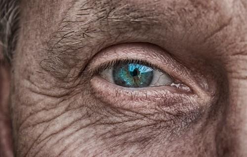 A demencia kockázati és védőtényezői