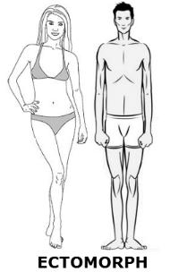 Táplálkozás és edzés testtípus szerint
