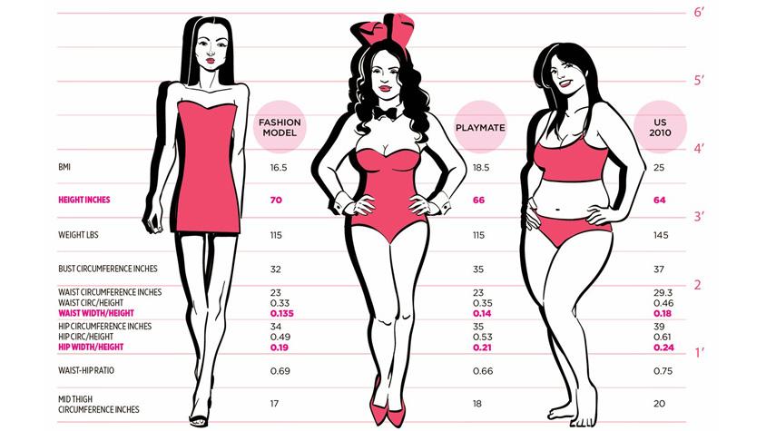 A test vékony alakja