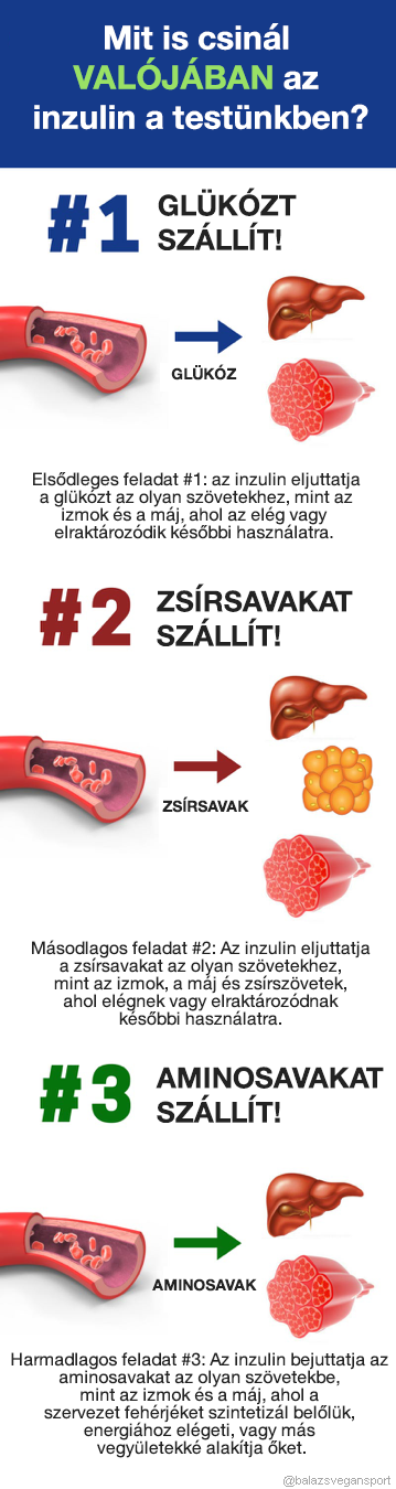 a zsír természetes elégetésének legjobb módjai)