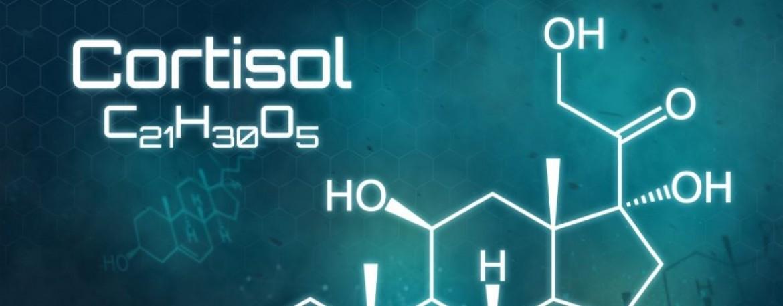 A kortizol és a zsírégetés kapcsolata | Kapusi Laci | Személyi Edző