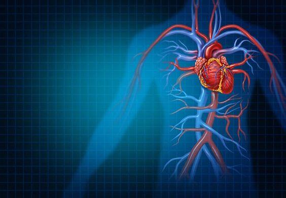 Miért veszélyes a kisvérköri magas vérnyomás? - tdke.hu