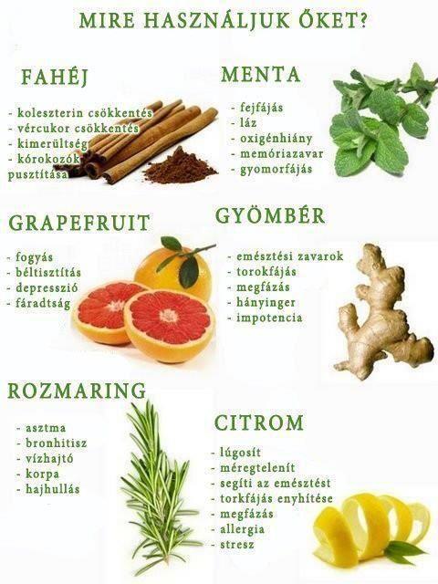 athena wellness és fogyás