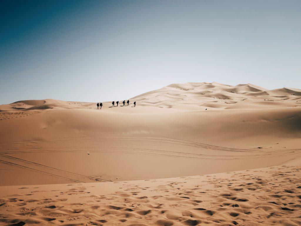 sivatagi regionális fogyás
