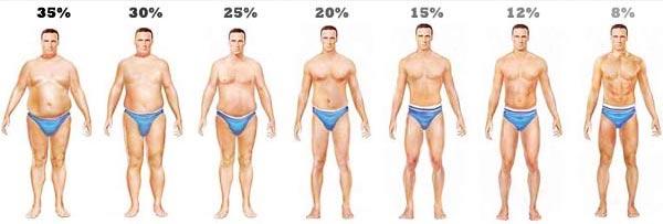 tippek az alacsonyabb testzsír elvesztéséhez füstölt kagyló fogyás
