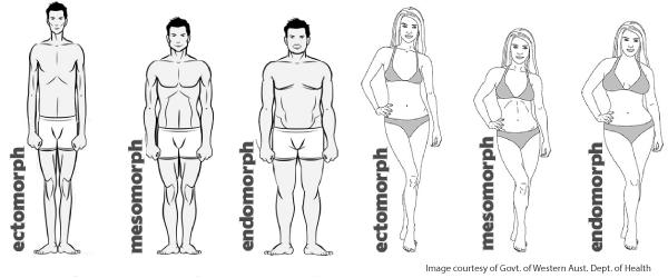 zsírégető testtípus