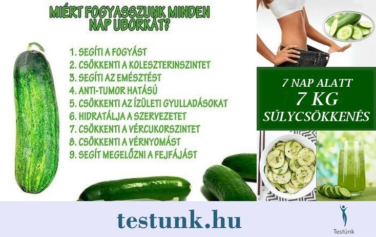 fogyni uborka