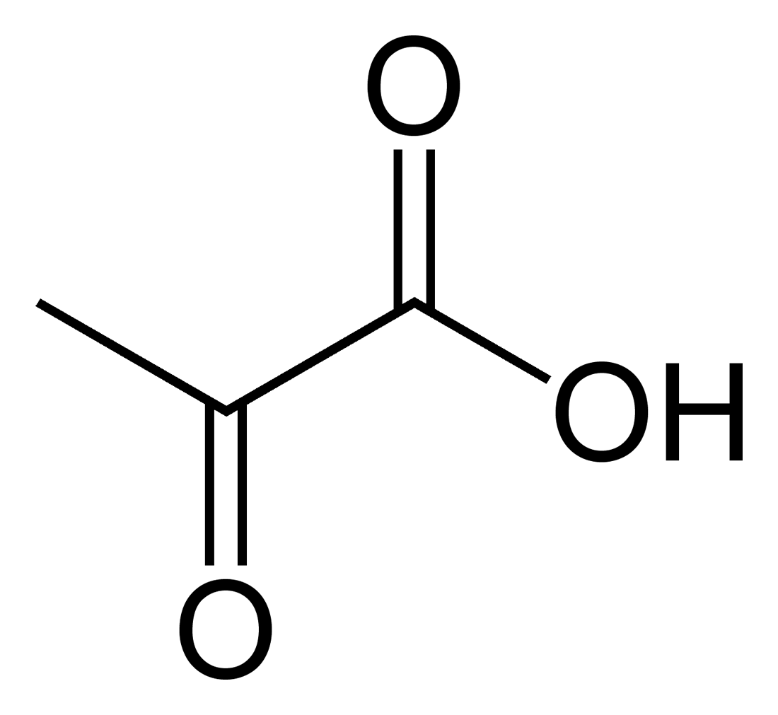 zsírégető piruvát