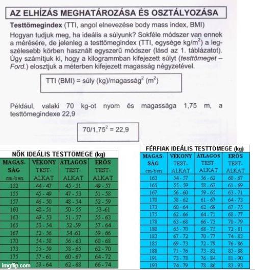 Testtömegindex-kalkulátor • Egészség • Reader's Digest