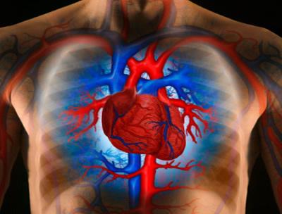 a fogyás segít a pulmonalis hypertoniában)