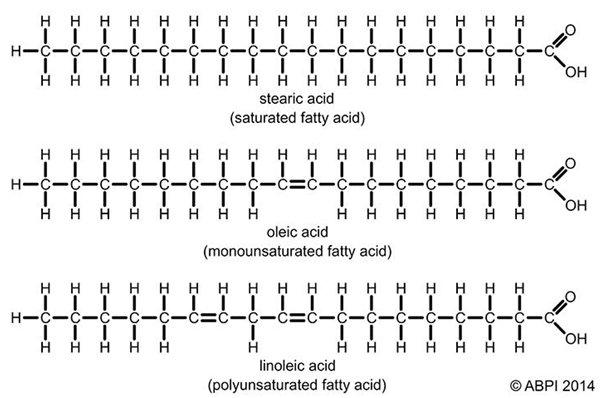 a többszörösen telítetlen zsírok lefogynak
