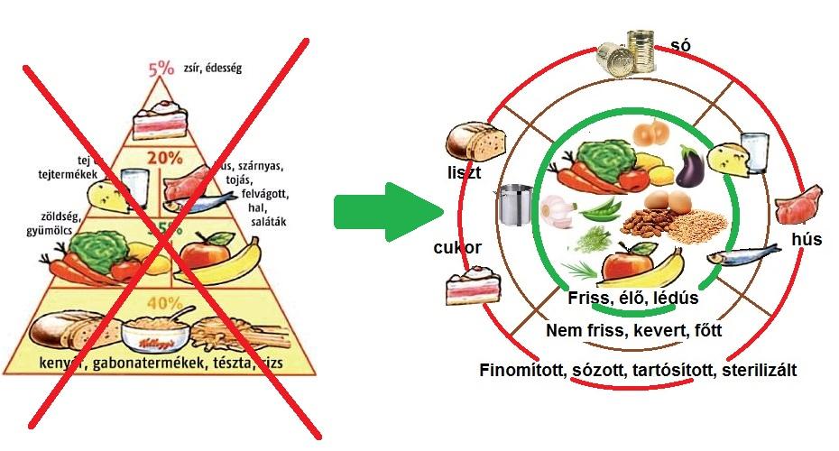 Az egészséges táplálkozás és étrend alapelvei • Dietless