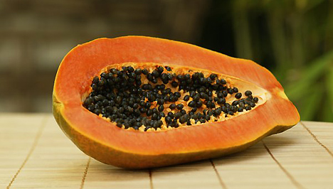 Papaya (Carica papaya, dinnyefa)