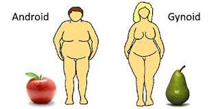 Elhízottság - SLIM4U | étkezési centre