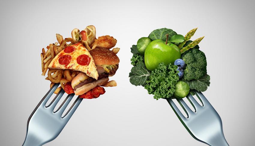 A magas koleszterinszint csökkentése, diétája és az epekövesség étrendje | Zöldház