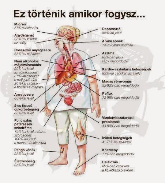 unitedhealthcare fogyás előnyei)