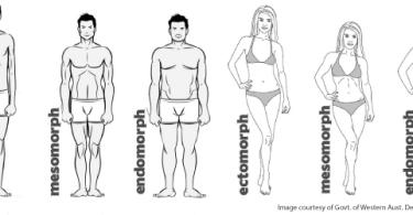 Milyen az ön testtípusa? Így kell edzenie és diétáznia